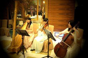 甜湯圓婚禮顧問|婚禮樂團|演奏古典